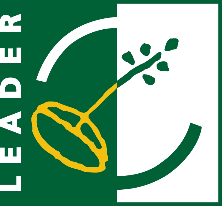 LEADER logo Jul09-DLDC
