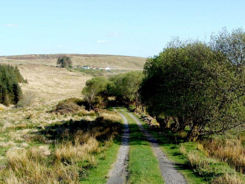 BSW-Disert-road-looking-at-John-Burkes